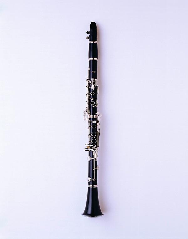 乐器世界图片 艺术图 笛子 黑色款式 风笛,艺术,乐器世界