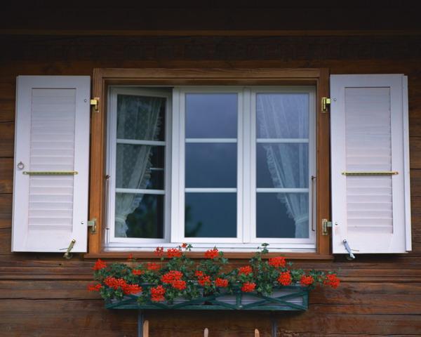 白色 窗户 透明 玻璃窗 窗花 外窗绿化-园林-园林,外窗绿化