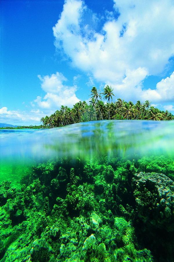 海底 相交 绿色 沙滩大海-自然风景-自然风景,沙滩大海