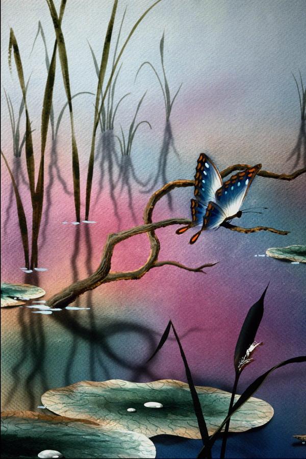 风景图画图片 广告创意图 蝴蝶 池塘 荷叶,广告创意,风景图画