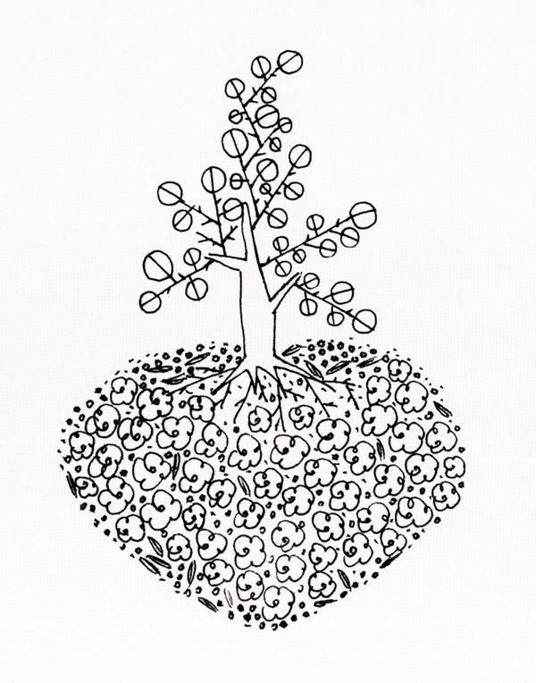 小树怎么画简笔步骤