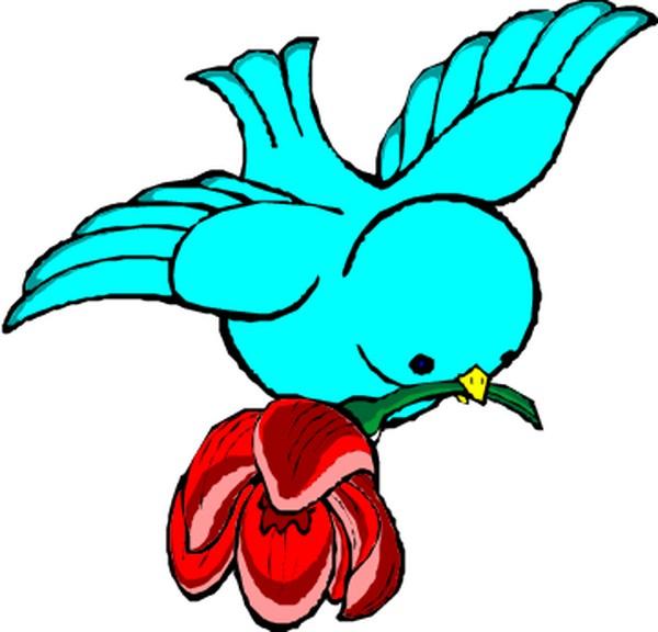 鸟类漫画图片-动物图,动物