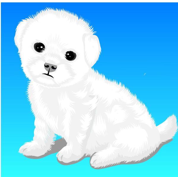 动物插图图片-动物图 可爱