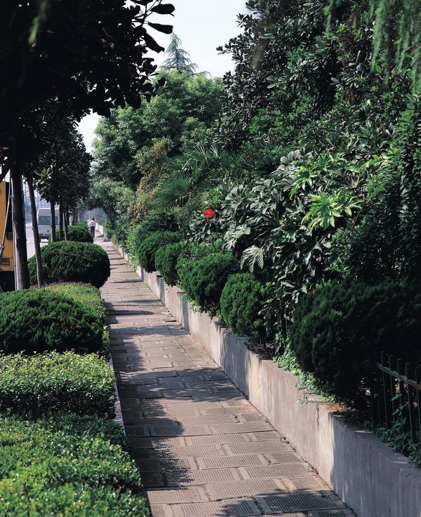园林城市 建筑 过道 园林绿化0121 高清图片