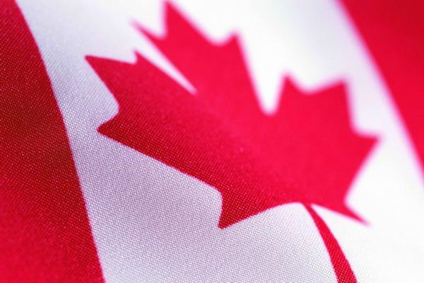 加拿大 枫叶 白色 国旗与地区旗帜-综合-综合,世界国旗