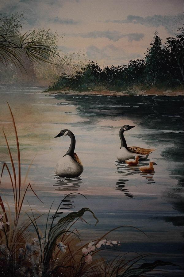 水塘 鸭子 游戏 岸边 树丛 风景图画-广告创意-广告创意,风景图画