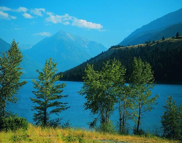 风景-山水剪影 青树 小树 湖泊