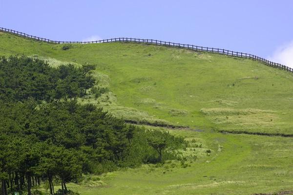 地旷野图片-风景图 草原 牧场 养殖 护栏 坡度,风