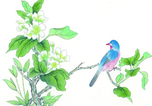 工笔花鸟图片-中国国画图