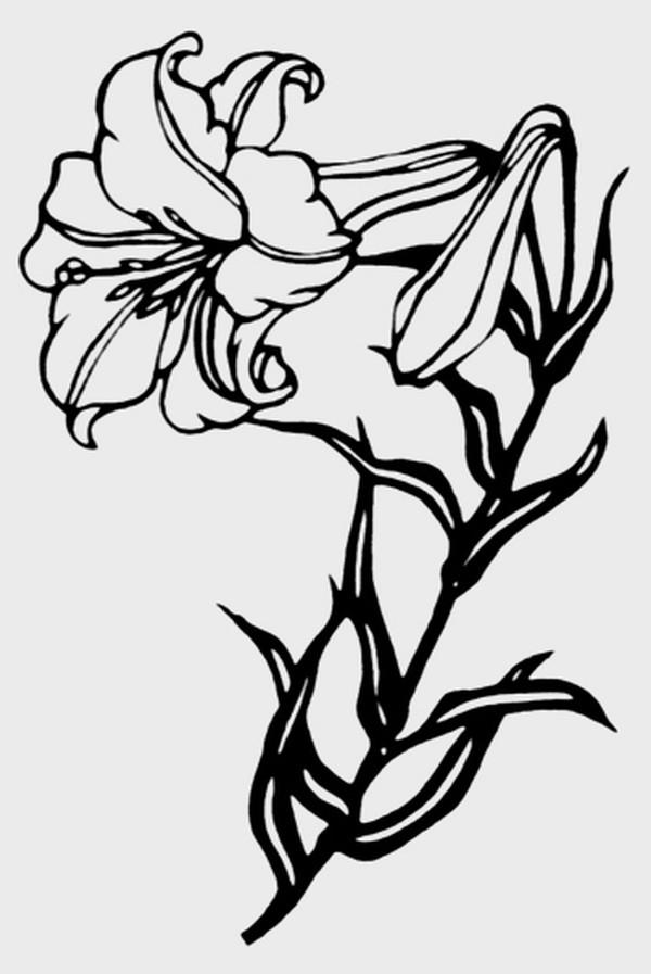 简笔画 设计 矢量 矢量图 手绘 素材 线稿 600_897 竖版 竖屏