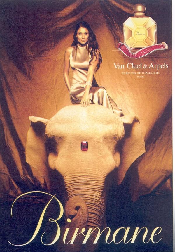 广告设计博览-趣味广告设计 坐椅 野生动物