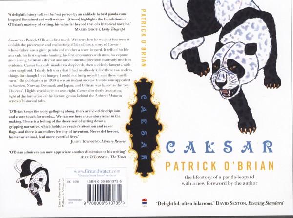 封面设计之摄影与绘画图片-书籍装帧设计图