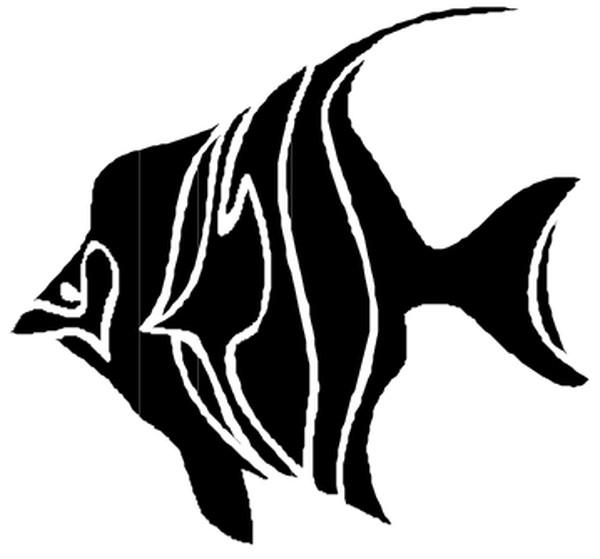 海洋动物-动物-动物,海洋动物