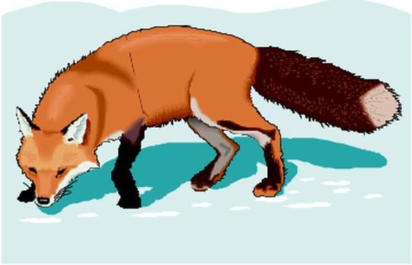 狐狸与小和尚漫画全集