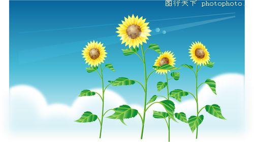 向日葵 新绿 向阳花 文字 天空 夏天-时尚矢量插画-时尚矢量插画,夏天