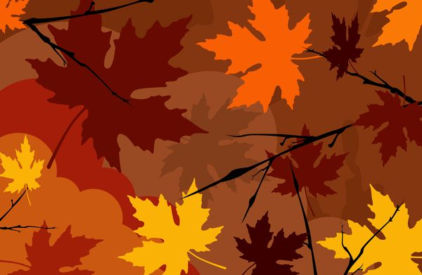 枫叶 壁纸 包装 落叶 秋天