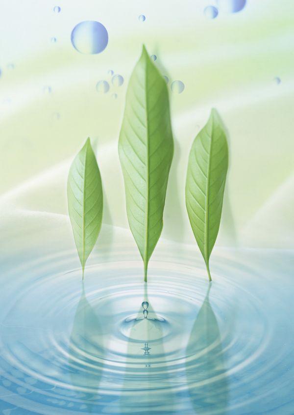 文明 脚步 希望 绿色生态环境-风景系列-风景系列,绿色生态环境