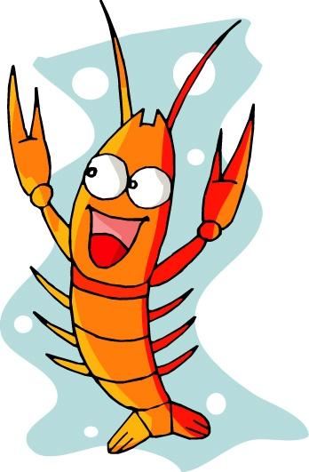 可爱动物图片-动物图 一只虾子