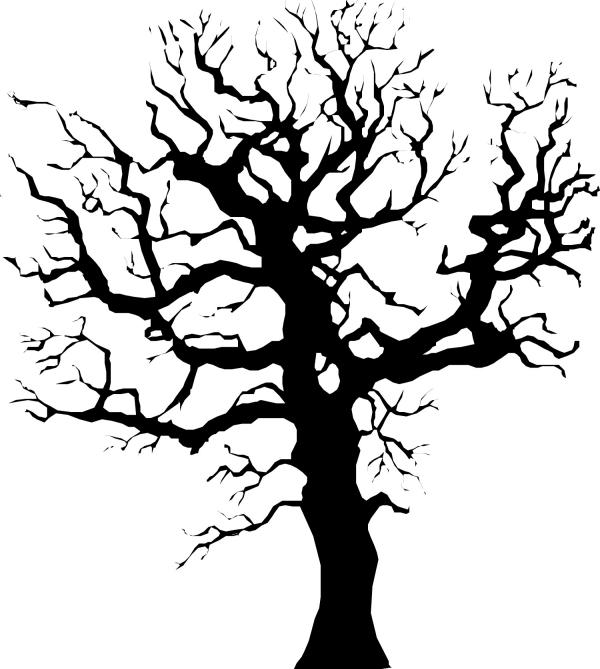 幼儿园大树树干简笔画
