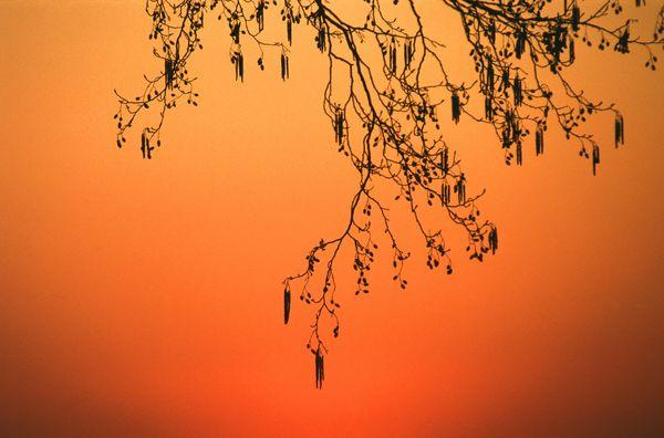 山水剪影图片-自然风景图