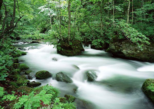 溪流水源图片 自然风景图 秀美 自然 岩石,自然风景,溪流水源