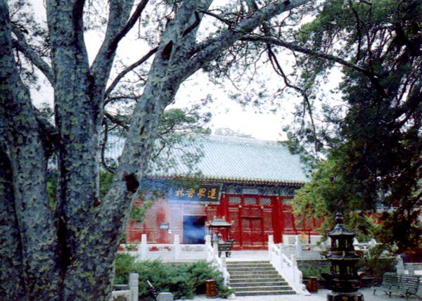 戒台寺 名胜古迹 世界 参观,北京名胜图片-首都